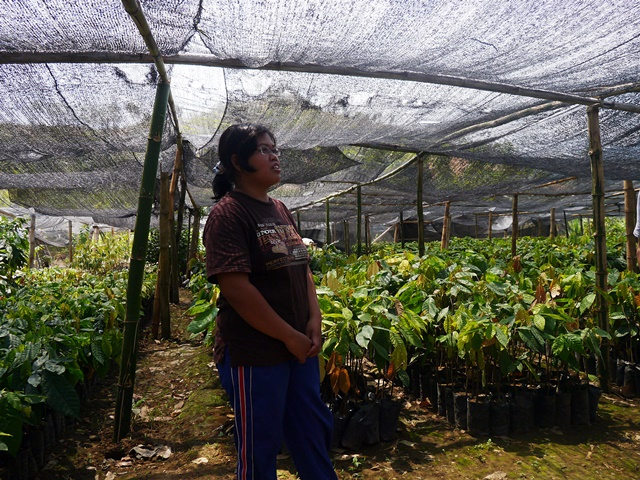 Mrs Suhartini in her tree-seedling nursery. Photo: World Agroforestry Centre/Amy Lumban Gaol
