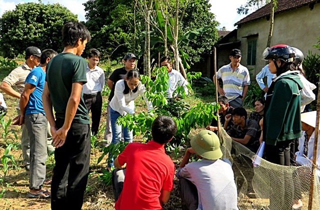 Training for planting and plot management of citrus trees. Photo: World Agroforestry Centre/Doan Thi Luyen