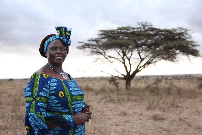 Women's rights, biodiversity and Africa Environment Day
