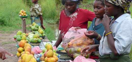fruit sellers malawi