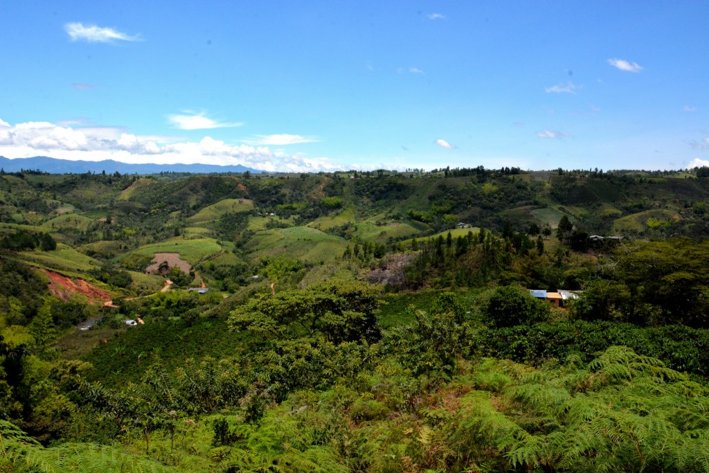 A climate-smart village in Los Cerrillos, Colombia. Photo: JL Urrea (CCAFS)