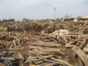 Firewood in small lots for sale in Ouagadougou, Burkina Faso. Photo: Javier Arevalo