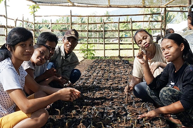 Smallholders' tree nursery and farm management learning group. Photo: World Agroforestry Centre/ Dienda Citasyari Putri Hendrawan