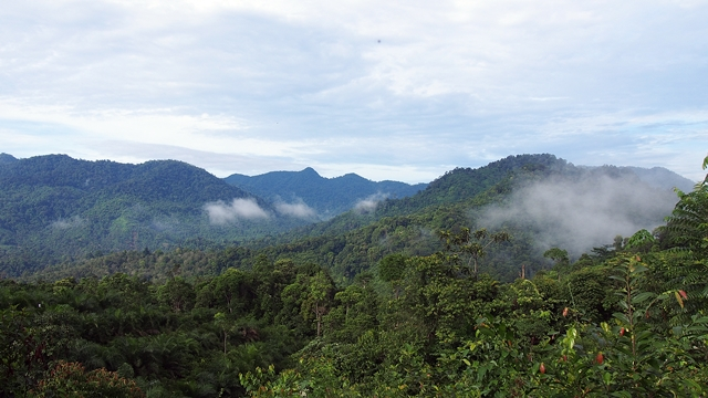 One landscape, one people: meeting national and international goals in ASEAN