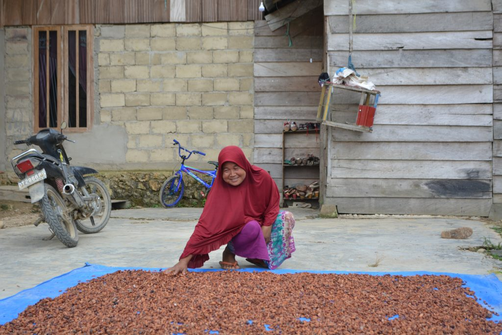 Ms Sumiasi spreading out drying cacao seeds