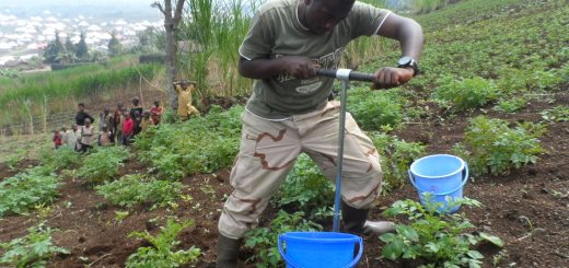 Soil sample collection at a site in Gishwati, Rwanda