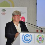 Rachel Kyte, CEO, SE4All, speaking at the COP22 side event on bioenergy. Photo: World Agroforestry Centre/Susan Onyango