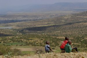Restored, tree-dotted landscape in Tigray, Ethiopia