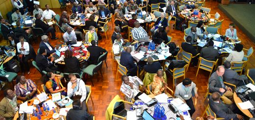 View of the room during the opening plenary. Photo by IISD