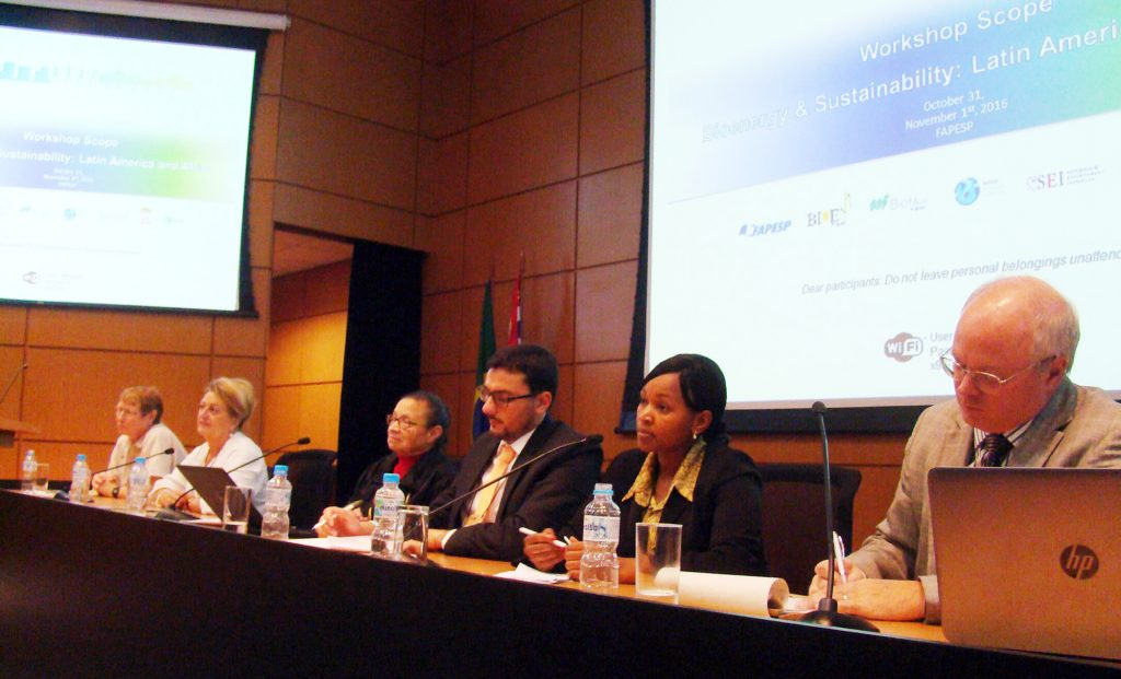 Panelists at the BIOENERGY & SUSTAINABILITY: Latin America and Africa workshop