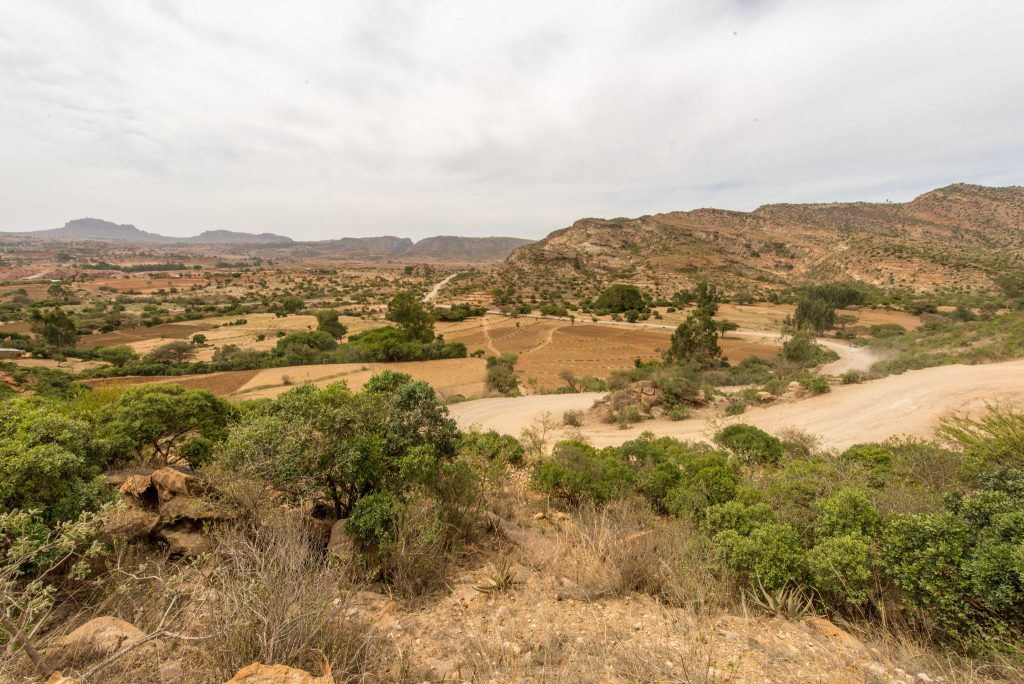 Landscape in restoration in Abreha Atsbeha, Tigray, Ethiopia. Photo: World Agroforestry Centre/ Ake Mamo