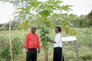 David Sang and his wife have thriving agroforestry practice on their three-acre farm in western Kenya. Photo: World Agroforestry Centre
