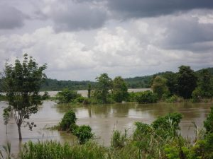 Floodplains along rivers protect areas downstream from flooding