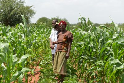 A pick and a spade may triple farmers' yields in the Kenyan drylands