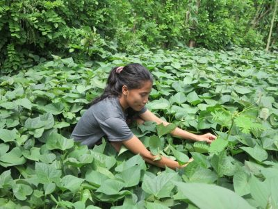 Empowering farmers, sustaining changes
