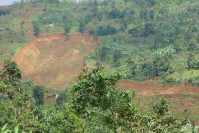 We need a revolution in land management, says ICRAF's Tony Simons