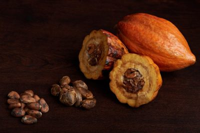 How planting trees can protect cocoa plants against climate change