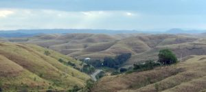 Restoring degraded tropical dryland in extreme conditions: the case of Sumba Island