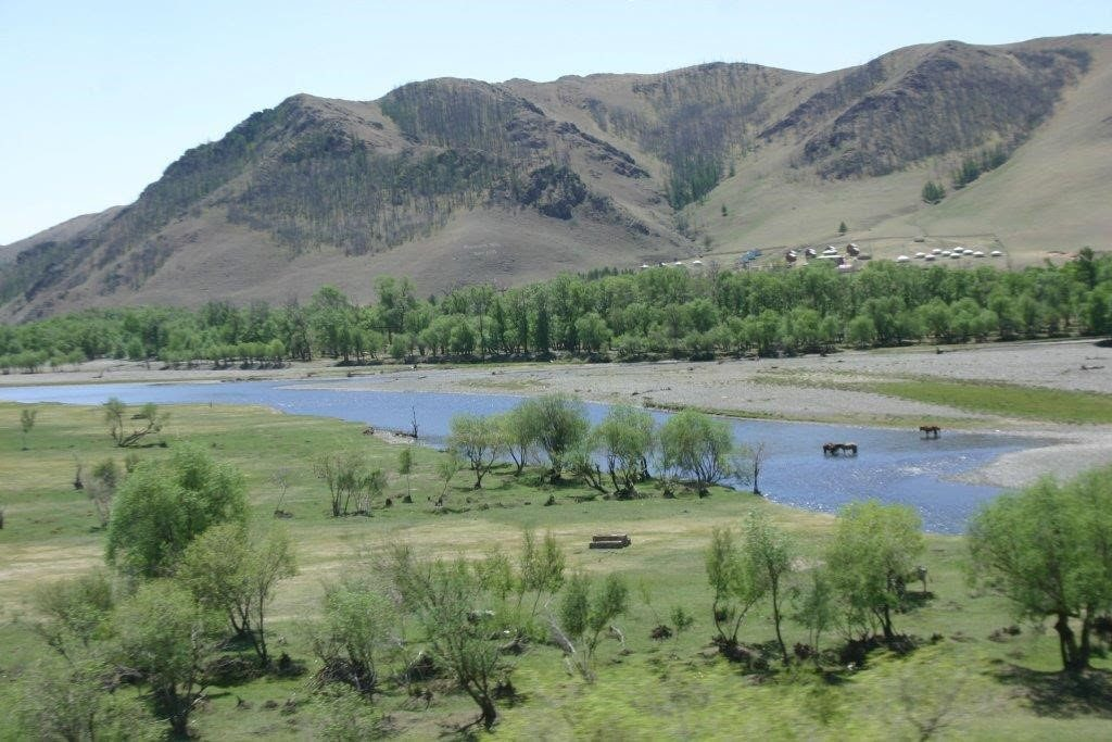 Riparian vegetation and landscape in Mongolia, a country where freshwater resources are scarce. © Alexander Buck.Riparian vegetation and landscape in Mongolia, a country where freshwater resources are scarce. © Alexander Buck.