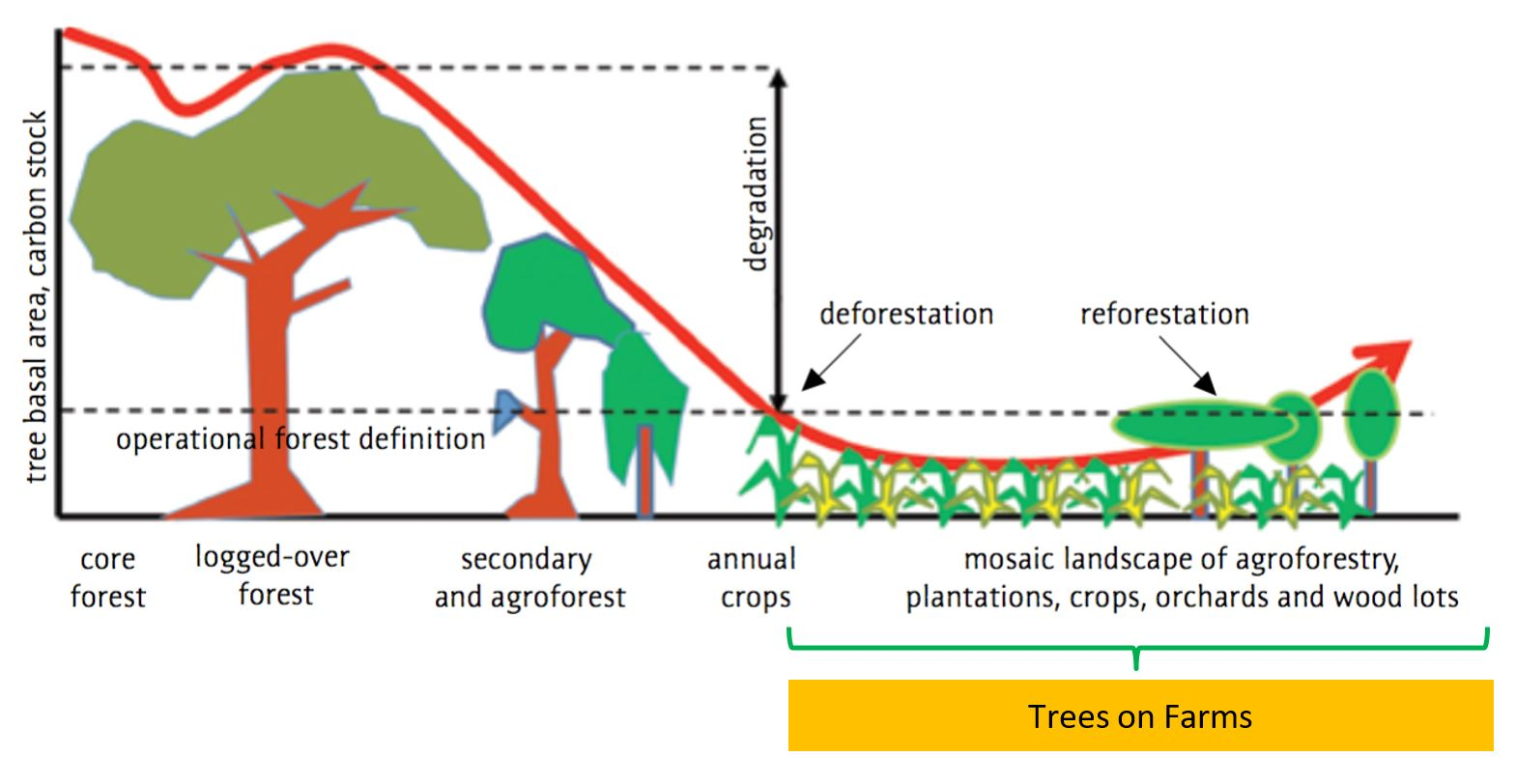 trees on farms play a critical role in providing some of the services  forests provide because they maintain, and restore, high levels of  landscape