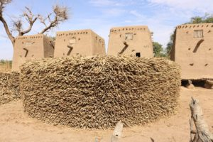 Drylands Development Programme: changed lives in the Sahel