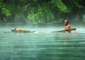 'Alone', a photo by Yudha Lesmana, was finalist in the XIV World Forestry Congress photo competition. http://bit.ly/1OjlqSp