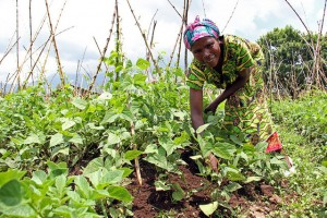 Immaculée Nyirahabimana is a farmer from Cyuve district-CIAT